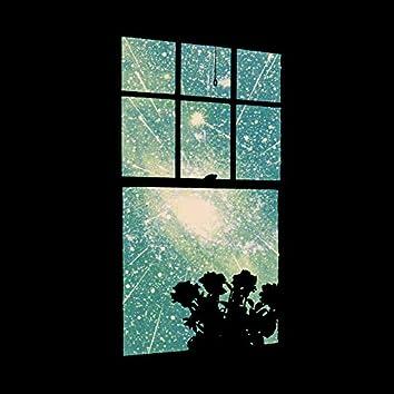 O Universo Observável da Janela