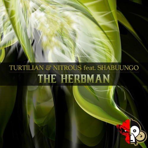 Turtilian