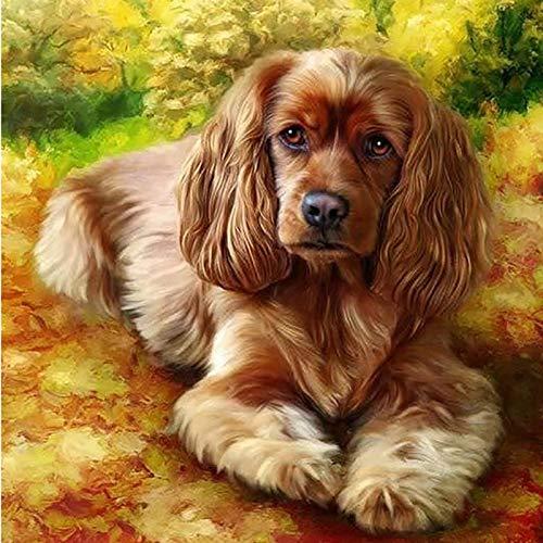 Yunzezka Pintar por Numeros Adultos Perro Mascota Animal Lienzo Pintura Al Óleo por Números Decoración De La Casa-Sin Marco 40x50cm