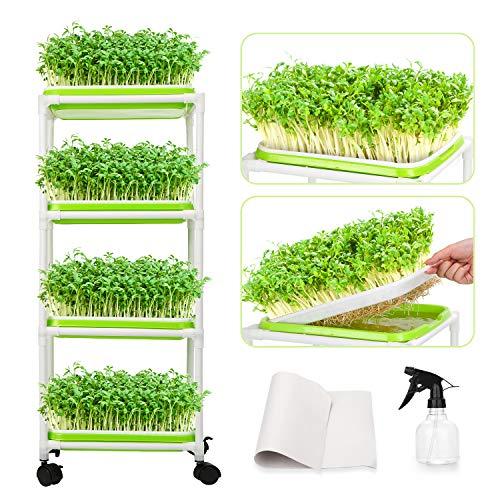 WADEO Seed Sprouter Tray Keimschale Sprossen, Keimschalen für Sprossen Seed Sprouter Tray BPA-freies mit 4-schichtigem Edelstahl Regal Soil-Free Keimkiste für Garten/Zuhause