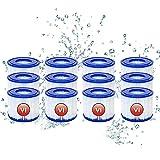 Mscomft Filtros VI para piscina Bestway Flowclear Pool Filter VI, filtro de repuesto para Lay-Z-Spa, para Miami, Vegas, Monaco BW58323 ERSTZT 58239 (12 unidades)