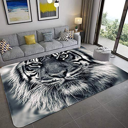 Modern 3D-Druck Realistischer Teppichboden, 3D optischer Illusionsbereich 3d, weiche Teppich Wohnzimmer Schlafzimmer Non-Rutsch-Runner-Teppich Wohnkultur Türmatte-A 31x47inch (80x120cm), A, 20x31inch