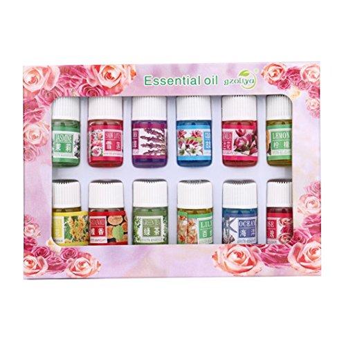 Paolian 12 Saveur 3ML/Box Végétal Naturel Aromathérapie Aromatique Huile Essentielle (12 Pcs/Box)