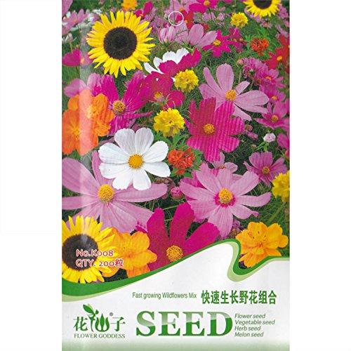 Croissance rapide Seed Wildflowers Mix * 1 Packet 200 Graines * Facile à semer, fleur rapidement * Flower Garden Mix * Livraison gratuite