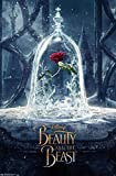 Trends International Beauty and The Beast Teaser Wall Poster 22.375' x 34'