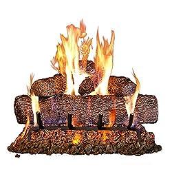 in budget affordable Peterson Real Fyre 24-inch Oak Log, Bent Burner, Matchlight (Natural Gas Only)