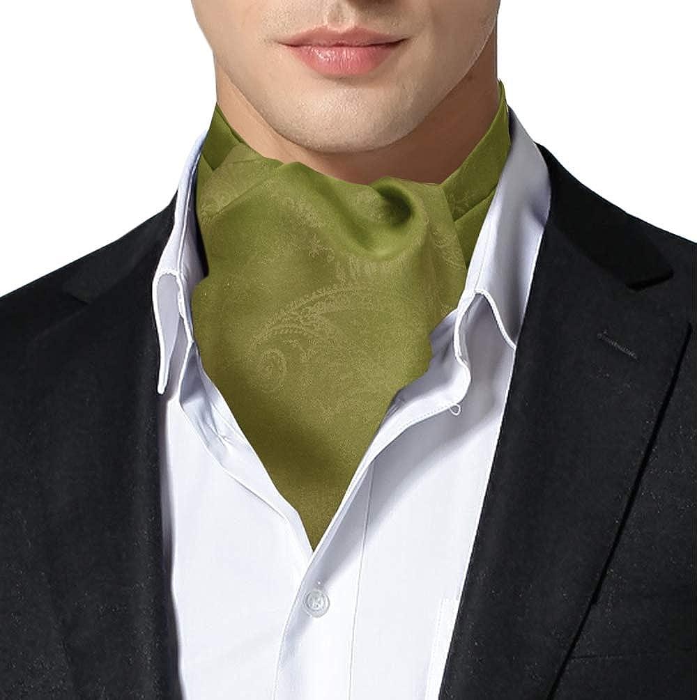 Remo Sartori Made in Italy Men's Holographic Duochrome Green Bronze Self Cravat Ascot Tie, Silk