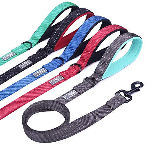 Vivaglory Dog Training Leash with Padded Handle, Heavy Duty 6ft Long Reflective Nylon Leash Walking Lead for Medium to Large Dogs, Grey