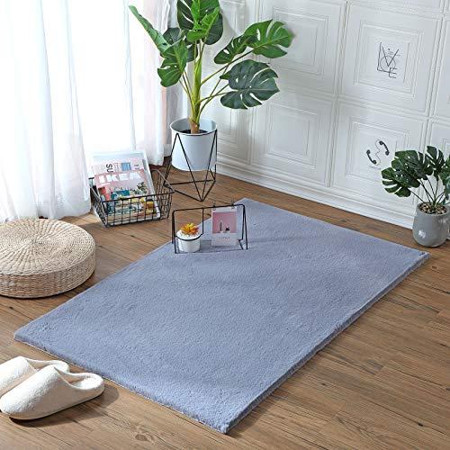 Alfombras Dormitorio Pelo Corto Color Plata alfombras dormitorio  Marca HEQUN