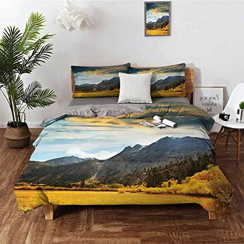 DRAGON VINES King Size Sheets Woodland Bed Sheets Twin Autumn in Mountain Golden Colored Grassland Sun Rays Clouds Cloudscape W79 xL90 Earth Yellow Bluegrey