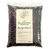 Sunseed Complemento alimenticio Premio. Pipa Negra de Girasol para Aves, Palomas, jilgueros, gallinas, Pollos, faisanes 1,5 Kg