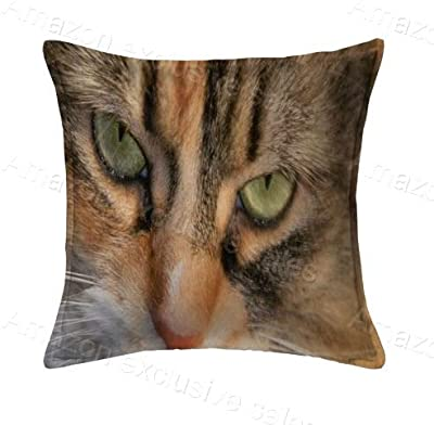 Cat Comfortable Throw Square PillowCases 20x20inch Pillow Protector(Twin Sides)