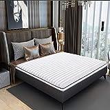 PLOLLD Palma de Coco Almohadilla del colchón, el Hotel Espesar Plegable colchón Tatami colchón de látex sin apretar...