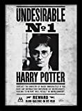 Pyramid International Harry Potter (Undesirable No1) 30x40