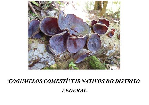 Cogumelos comestíveis nativos do Distrito Federal