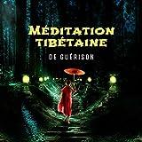 Méditation tibétaine de guérison: Chants bouddhistes, Voyage chamanique avec des...
