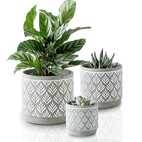 Plant Pots with Drainage Holes MIGGN 6 Inch+5 Inch+4 Inch Flower Pots Set of 3...