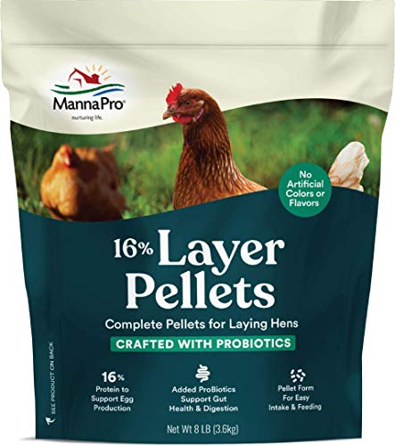 Manna Pro Chicken Feed | 16% Chicken Food with Probiotic Pellets, Chicken Layer Feed | 8 Pounds