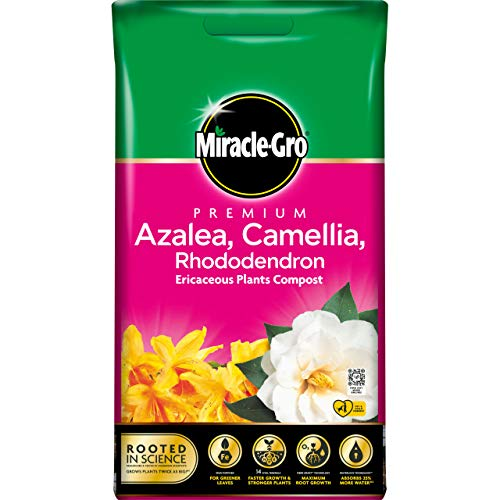 Miracle-Gro Eracacious Compost - Azelea, Camelia, Rhododendron - 10L BAG, (New 2020 Range)