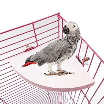 Felenny Support de Plate-Forme de Perche Doiseau pour Animaux de Compagnie en Forme Déventail en Bois Perchoirs de Cage à Oiseaux Support de Plate-Forme Jouet Accessoires de Cage de