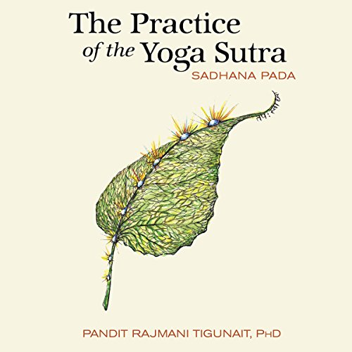 The Practice of the Yoga Sutra: Sadhana Pada audiobook cover art