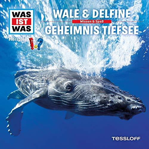 Wale & Delfine / Geheimnis Tiefsee Titelbild