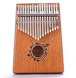 HSTD Pouce Piano, Finger Piano 17 Clés, Mbira Cadeau d'anniversaire de Noël Halloween pour Les Fans de Musique Enfants Adultes