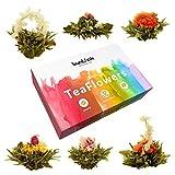 Buntfink 'TeaFlowers' Teeblumen Geschenkset, 6 Teerosen/Teeblüten in Geschenkbox, Grüner Tee, von Hand gebunden und vakuumverpackt, das Geschenk für Frauen
