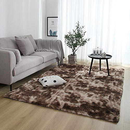 HXJHWB Harde dragende Barrier Mat Moderne Tapijten - Lange haarband kleurstof gradiënt tapijt woonkamer slaapkamer