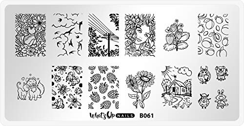 Whats Up Nails - B061 Summer in the Countryside Stamping Plate for Nail Art Design