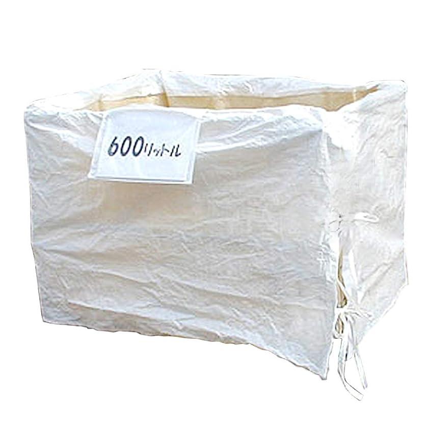 スペイン語ユーザー深さリレーバッグ RB60S2B-DUL-BOX (2袋入) メッシュパレット 網カゴ パレティーナ フレコン 1000×800×800 廃棄物回収 製品運搬 内張り 荷こぼれ防止 耐荷重1000kg 600リットル 0.6立米 厚手生地使用