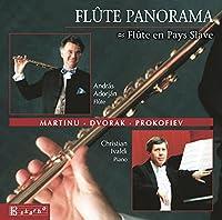 Vol. 6-Flute Panorama
