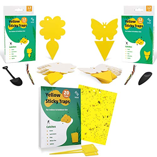 KGK Sticky Trap, Fruit Fly and Gnat Trap Yellow Sticky Bug Traps for Indoor/Outdoor Use - Insect Catcher for White Flies,Mosquitos,Fungus Gnats,Flying Insects - Disposable Glue Trappers