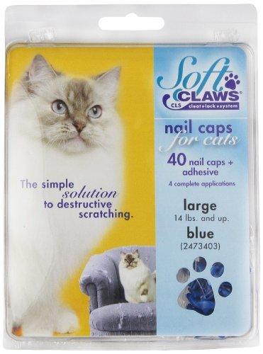 Soft Claws Inc Feline Doux Griffes Cat Nail Caps Take-Home kit, Grande, Bleu, par Doux Griffes