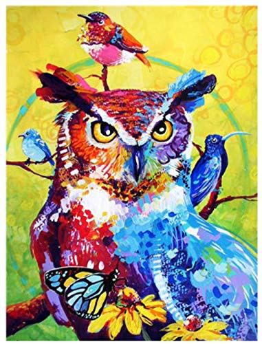owl Birds Diamond Painting Full Square Rhinestone Embroidery Mosaic Sticker Decor Diamond Tapestry Posters Wall Papers Kids Gift