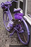 The Poster Corp Panoramic Images – Purple Bicycle on