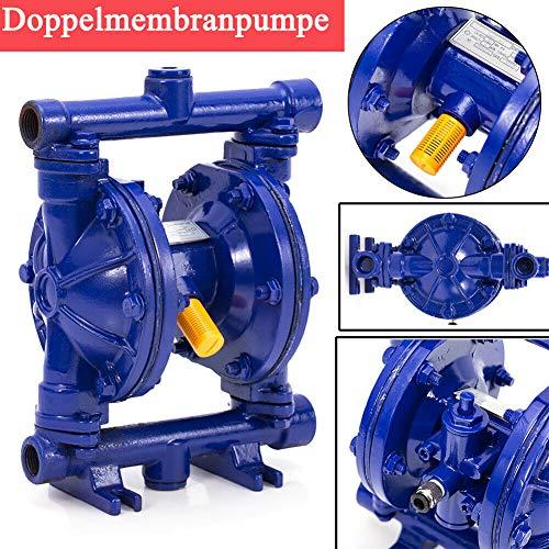 TABODD Druckluftbetriebene Doppelmembranpumpe 1/2 Zoll Einlass und Auslass aus Gusseisen 12GPM Max 120PSI-Pumpe für die chemische Industrie, chemische Flüssigkeit
