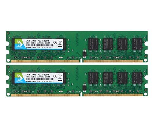 DUOMEIQI Kit de 4GB (2 X 2GB) 2RX8 DDR2 667MHz DIMM PC2-5300 PC2-5400 CL5 1.8v 240 Pin 5300U Non-ECC Memoria RAM de Escritorio sin búfer Módulo Compatible con el Sistema Intel AMD