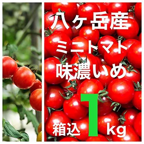 八ヶ岳産 ミニトマト プチトマト 約1kg(箱込)