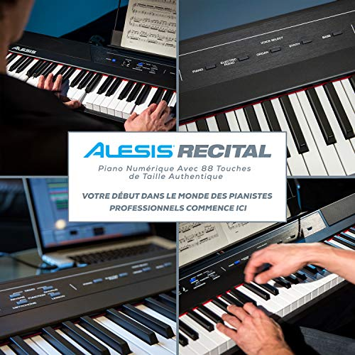 Alesis Recital - Piano Numérique / Clavier de 88 Touches Semi-Lestées de Taille Authentique, avec...