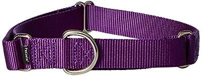 "PetSafe Martingale Collar, 1"" Large, Deep Purple from Toys & Behavior"