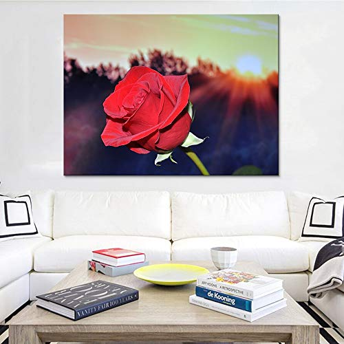 yaoxingfu Jigsaw puzzle 1000 piece Art sunshine red rose flower jigsaw puzzle 1000 piece adult Great Holiday Leisure,Family Interactive Games50x75cm(20x30inch)