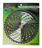 Kawapower KW00541 Disco cuchilla de Widia PRO con 40 puntas para...