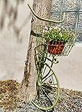 DJLOOKK Soporte para macetero montado en la Pared, Estante de exhibición de Flores en Forma de Bicicleta de Hierro Forjado, Estante para macetero de decoración de Pared, Canasta Colgante,Verde