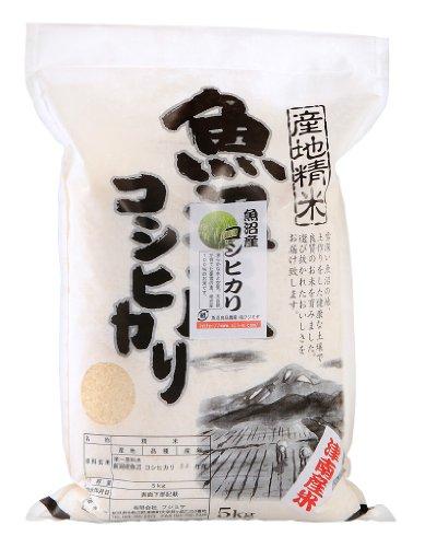 魚沼産コシヒカリ 5kg 令和2年度産