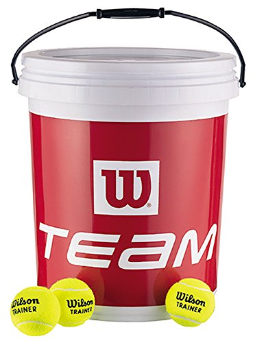 Wilson Team Trainer Tennisballen