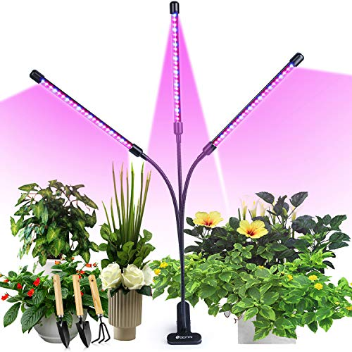 semai LED 30W Pflanzenlicht Bild