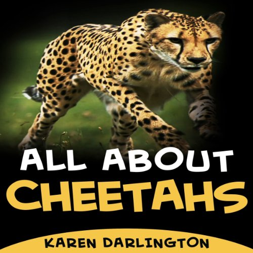 All About Cheetahs (All About Everything) audiobook cover art