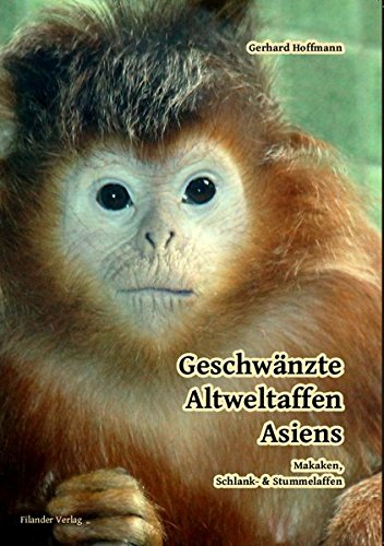 Geschwänzte Altweltaffen Asiens: Makaken, Schlank-& Stummelaffen