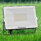 Focos LED exterior-Maxuni 30W proyector led exterior , Luz de pared exterior impermeable IP65 para jardín, garaje, patio [Clase de eficiencia energética A++] (30W)
